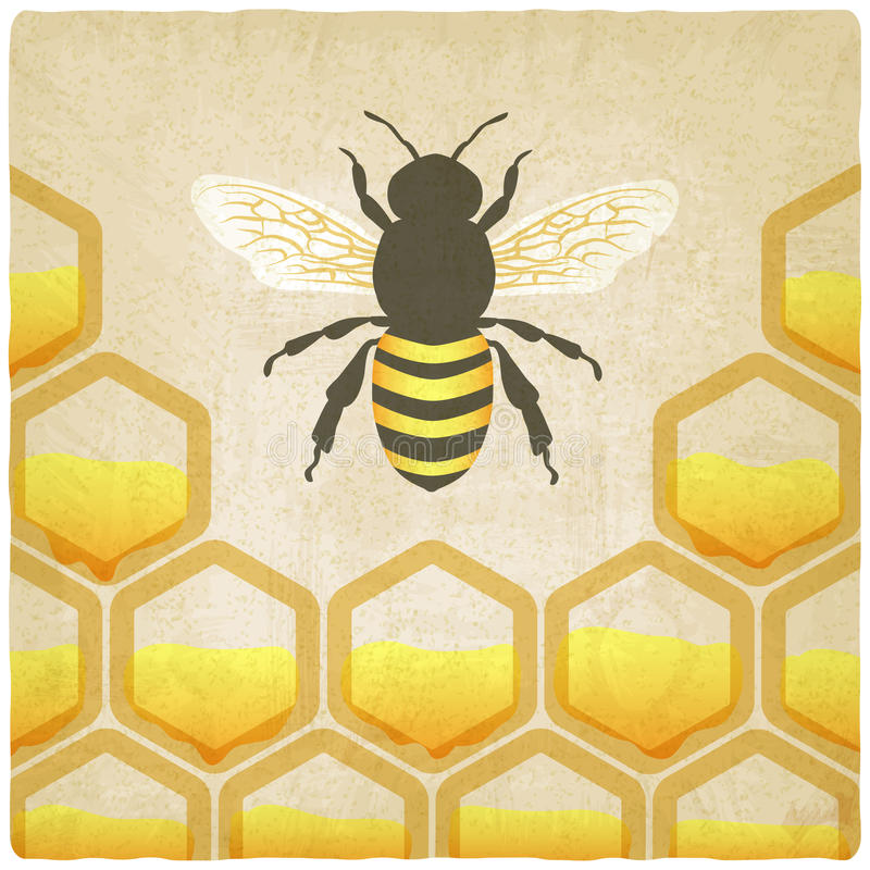 Bee honeycomb old background vector illustration