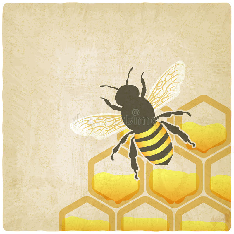 Bee honeycomb old background stock illustration