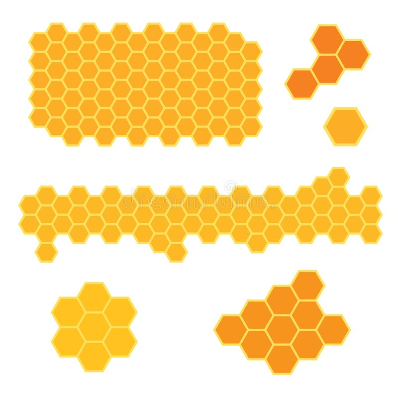 Bee honeycomb texture. Vector illustration vector illustration
