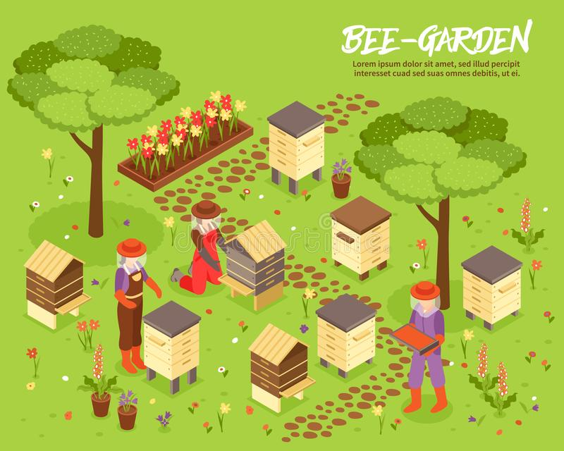 Beegarden Bee Yard Isometric Illustration royalty free illustration