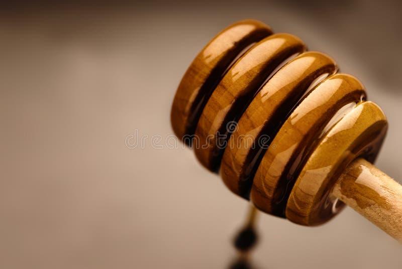 Download Bee nectar stock photo. Image of ingredient, dinner, macro - 22195240