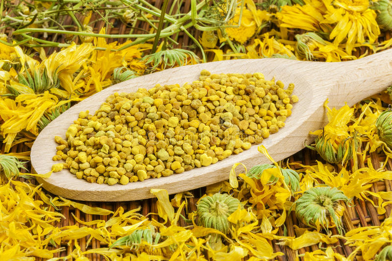 Bee pollen grains with dry calendula around royalty free stock images