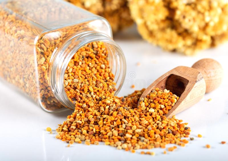 Bee pollen grains and honey in bowl. royalty free stock images