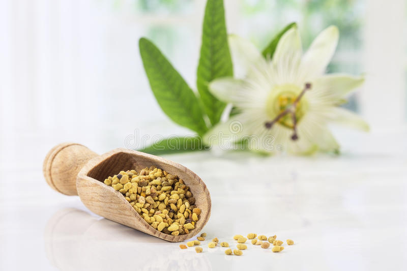 Bee pollen in the spoon on white whith passiflora flower. Bee pollen in the spoon on white stock images