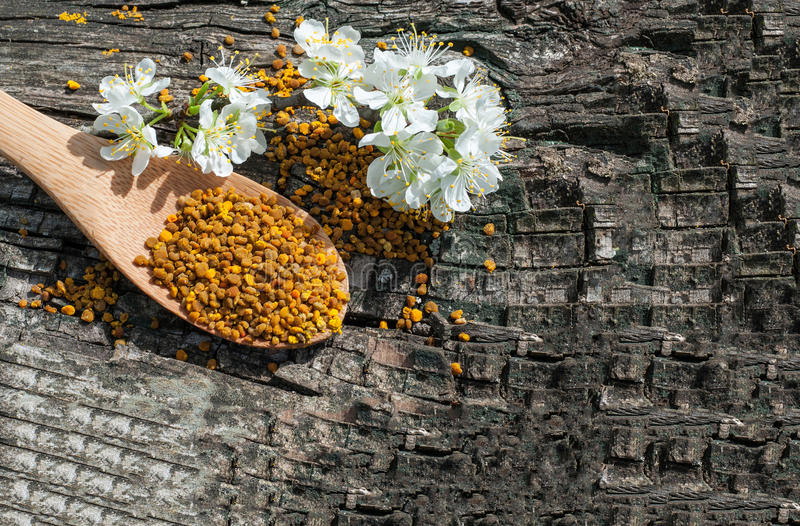 Bee pollen in a wooden spoon and flowers of spring trees royalty free stock photo