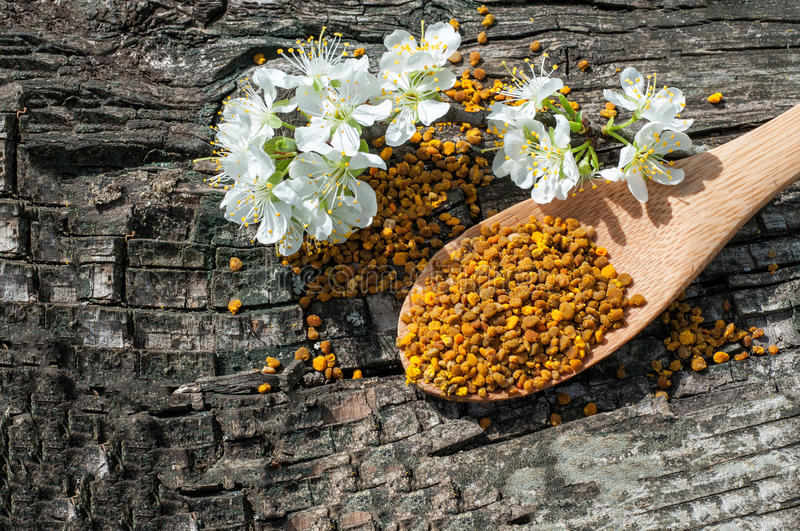 Bee pollen in a wooden spoon and flowers of spring trees. Apitherapy stock photos