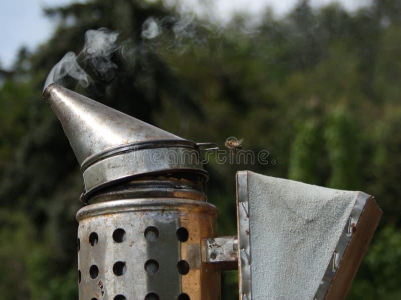 Bee in smoke royalty free stock photos