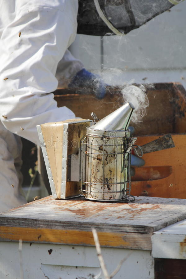 Bee Smoker or Fogger. A bee smoker or fogger used to sedate agitated honey bees stock image
