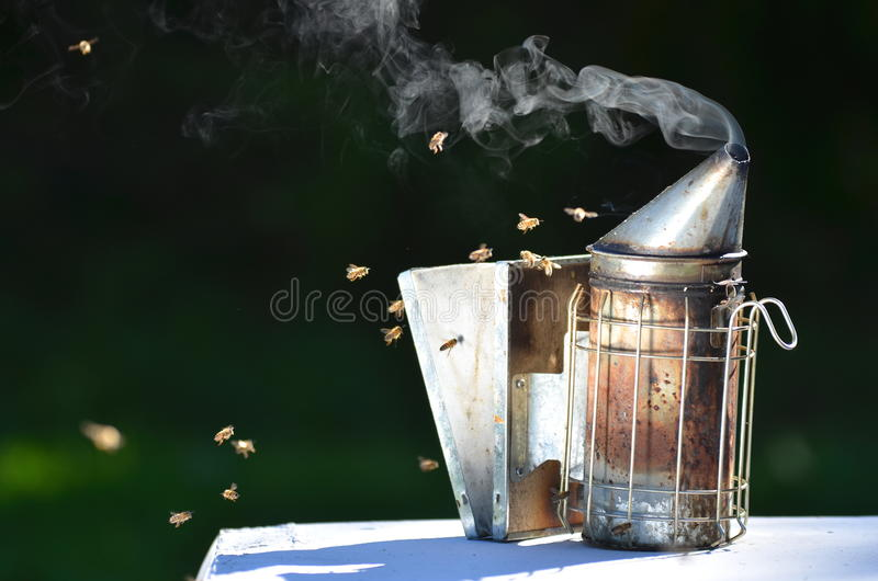Bee smoker. Standing on a beehive in apiary royalty free stock photo