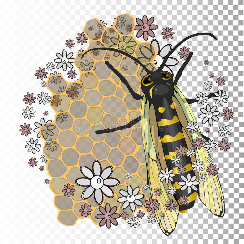 Bee With Transparent Wings On A Background Honeycombs And Flowers Vector Illustration For Your Design