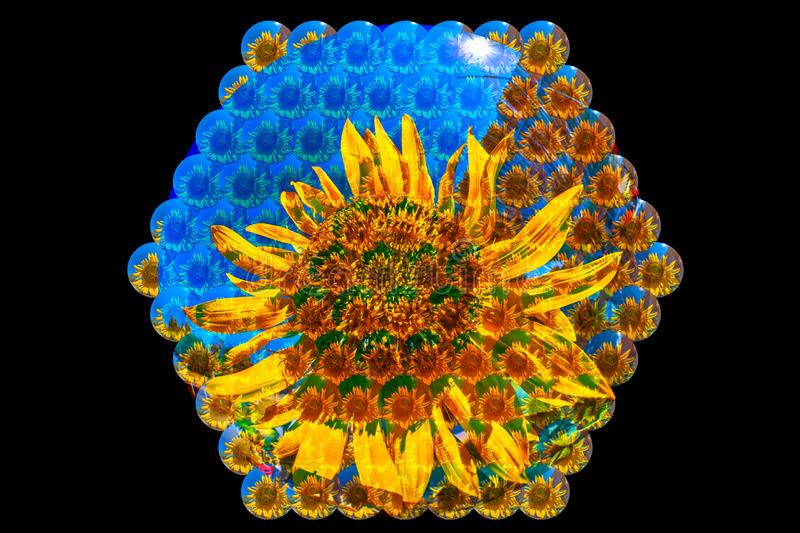 Bee vision. Of a sunflower in hexagonal view of its eyes stock illustration