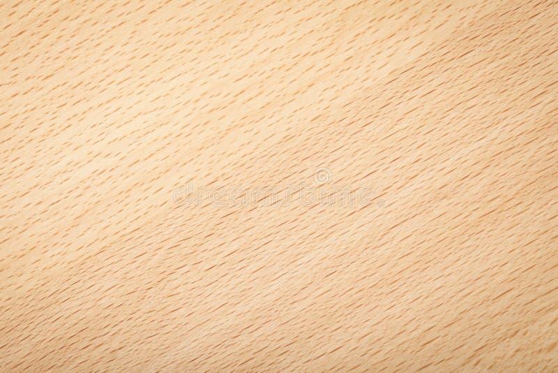 Beech texture. Beech wood texture for background. Natural plank macro shot stock photos