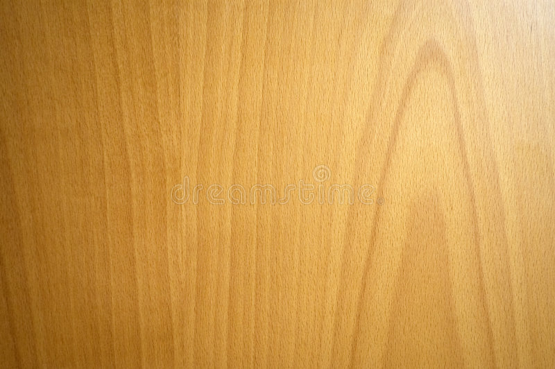 Beech wood texture. Wooden background - beech wood texture or pattern royalty free stock photos