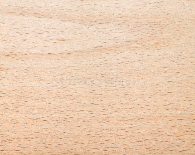 Beech wood texture stock image of lumber grain