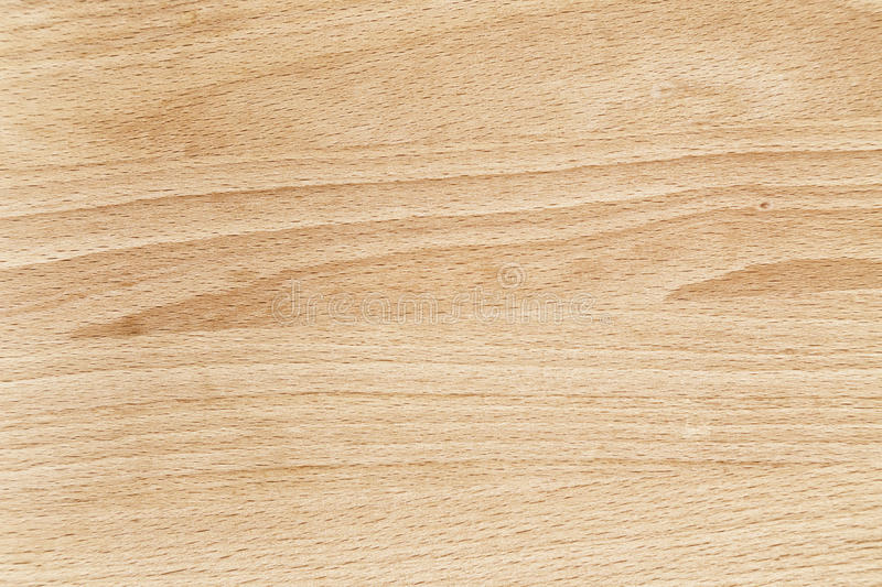 Uses For Beech Wood ~ Beech wood texture close up stock image of sample