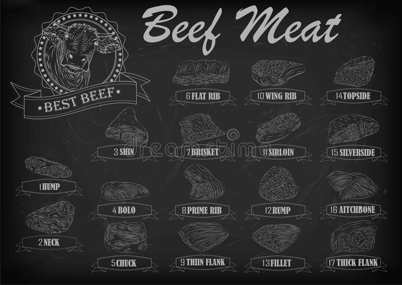 Beef cow bull whole carcass cuts cut parts infographics scheme s. Ign signboard poster butchers guide: neck chunk, brisket fillet rump. Vector beautiful stock illustration