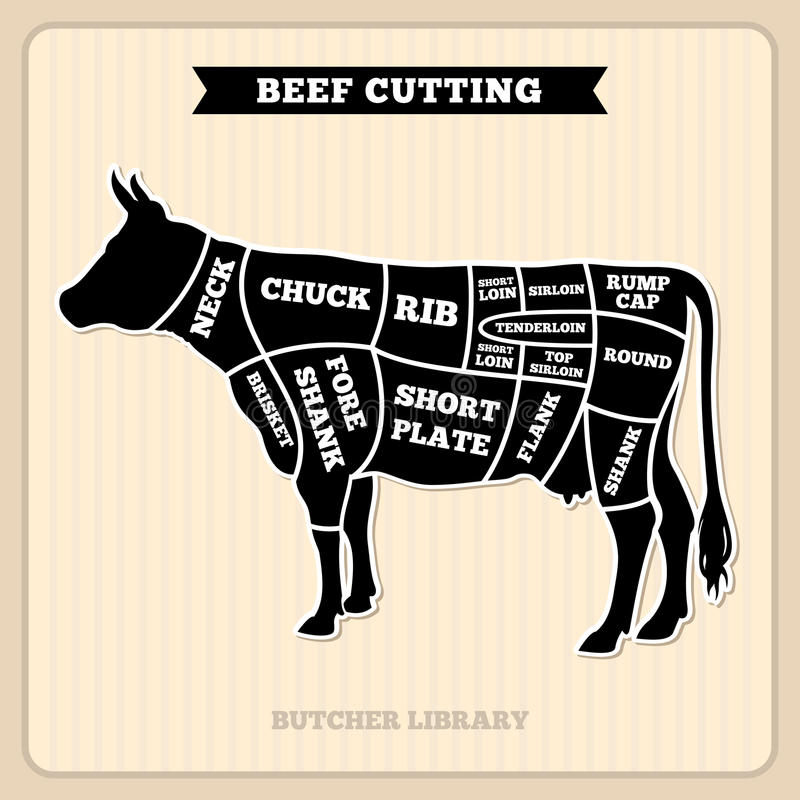 Beef cow cuts butcher vector diagram stock vector illustration of download beef cow cuts butcher vector diagram stock vector illustration of black butchery ccuart Gallery