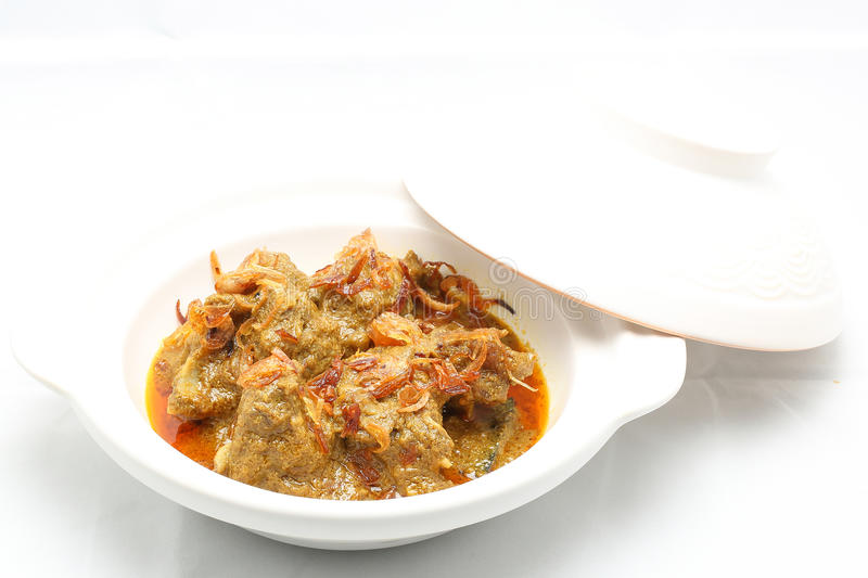 Beef Curry with sprinkled onion fry stock image
