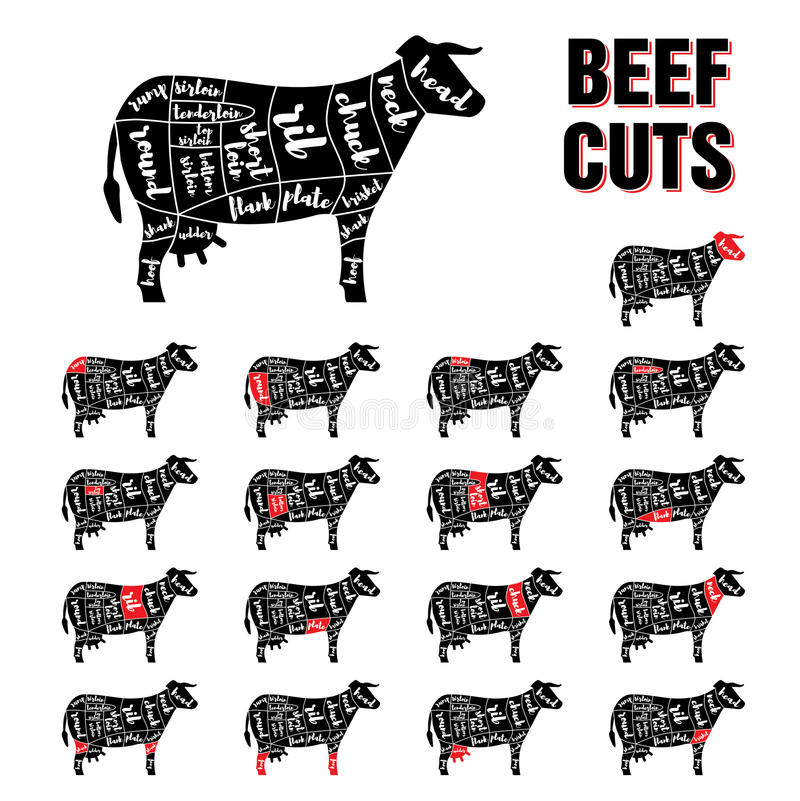 Beef Cuts Vector Template Set stock illustration