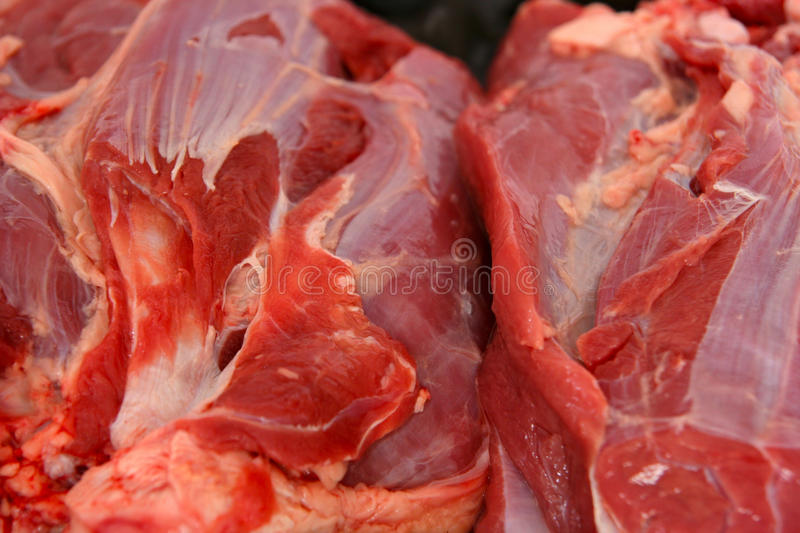 Download Beef meat stock photo. Image of beef, cook, balanced - 17448212