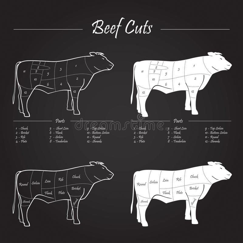 Beef Meat Cuts Scheme stock photography