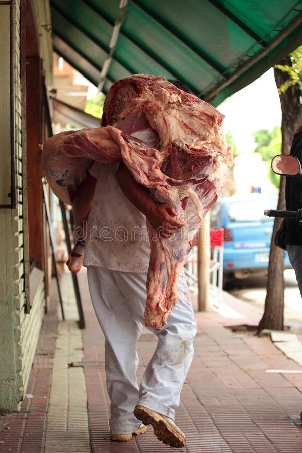 Beef Origins. A worker carries a heavy side of quality beef to the butcher in Capilla De Monte, Argentina royalty free stock photos