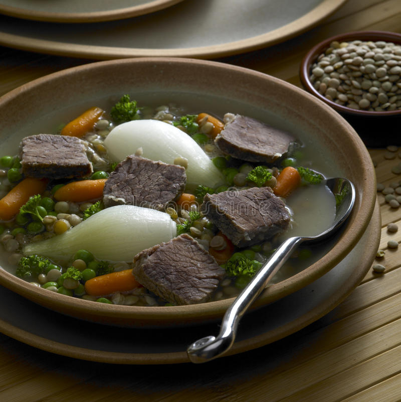 Free Beef Soup Stock Photography - 10508162