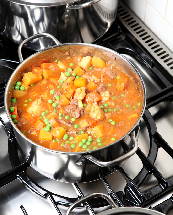 Free Beef Stew Royalty Free Stock Photos - 18523348