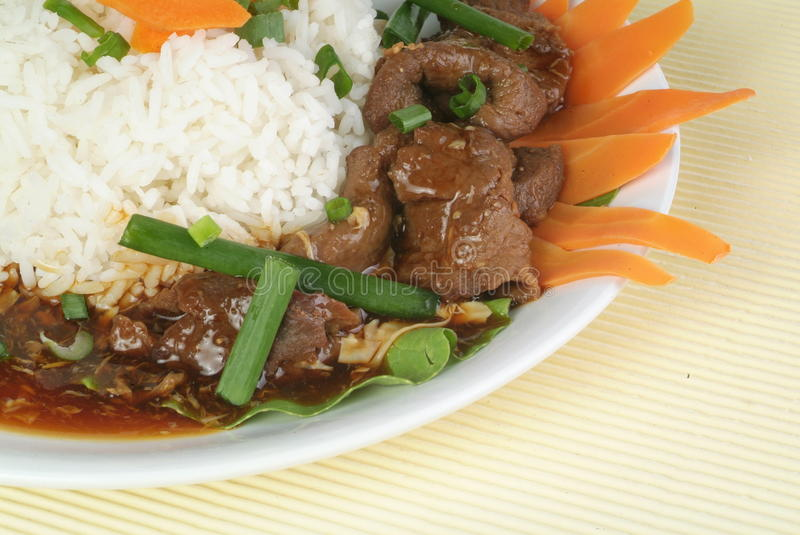 Beef Stew Brisket. With Rice and Vegetables stock photography