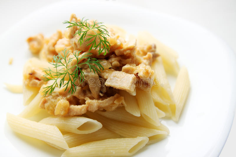 Download Beef stroganoff stock image. Image of mushrooms, dinner - 28258009