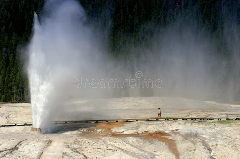 Beehive geyser in Yellowstone national park royalty free stock photo