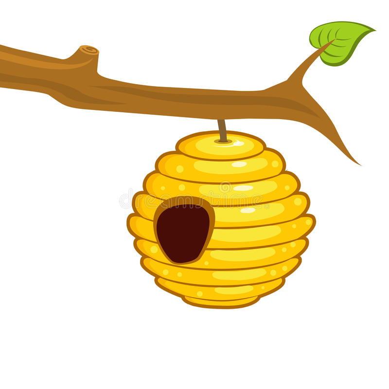 Beehive hanging from a branch royalty free illustration