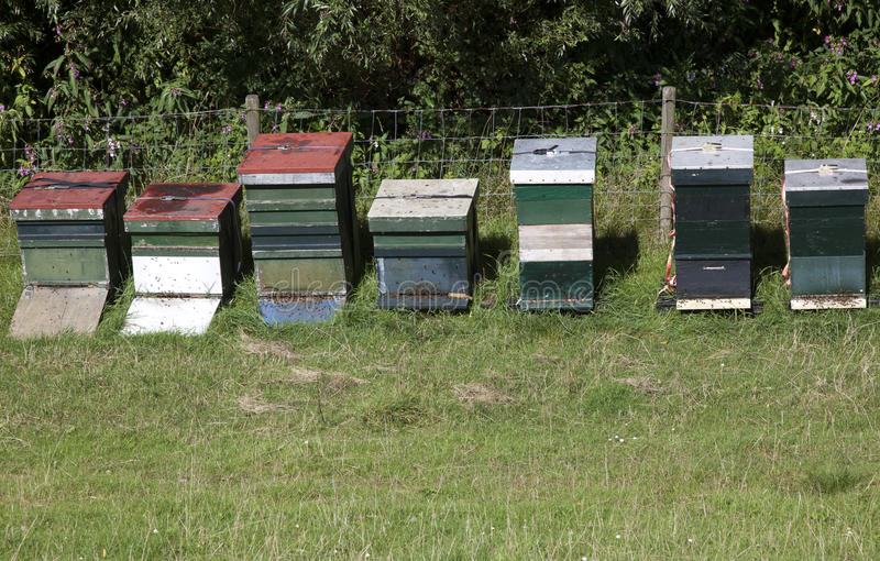 Download Beehives stock image. Image of bee, environment, fashioned - 27627435
