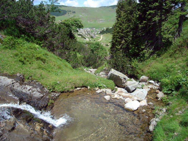 Beek in berg, Bosnia stock afbeelding