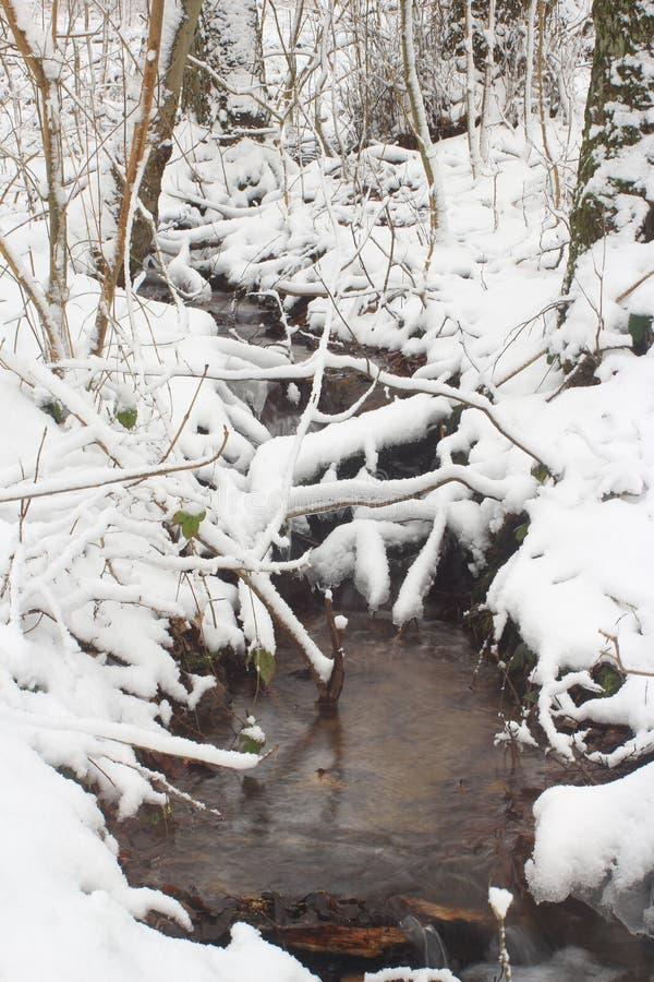 Beek en sneeuw royalty-vrije stock afbeelding