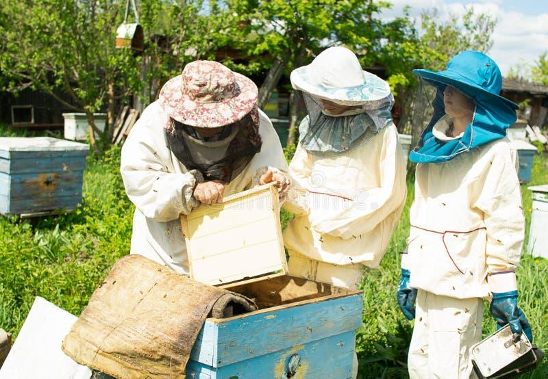 Beekeeper показывает работу с пчелами к отроческим мальчикам Дед и внуки в пасеке r стоковая фотография