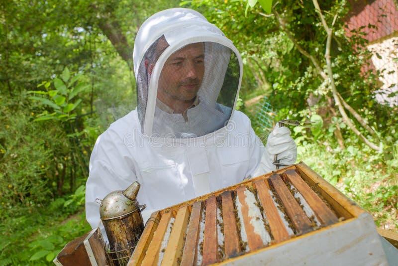 Beekeeper работая на открытой крапивнице стоковые изображения rf