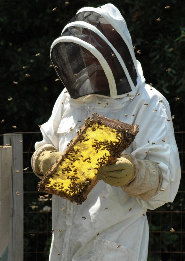 Free Beekeeper Royalty Free Stock Photography - 1106907