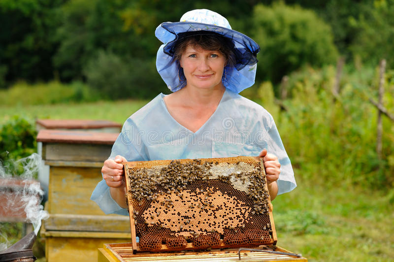 Download Beekeeper stock image. Image of colony, apiary, meadow - 26644047