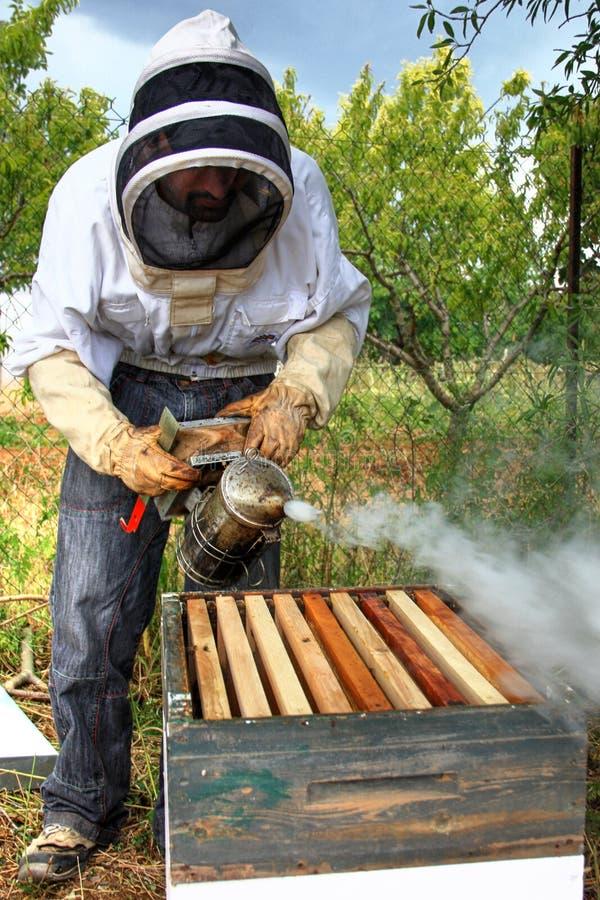 beekeeper fotos de stock royalty free
