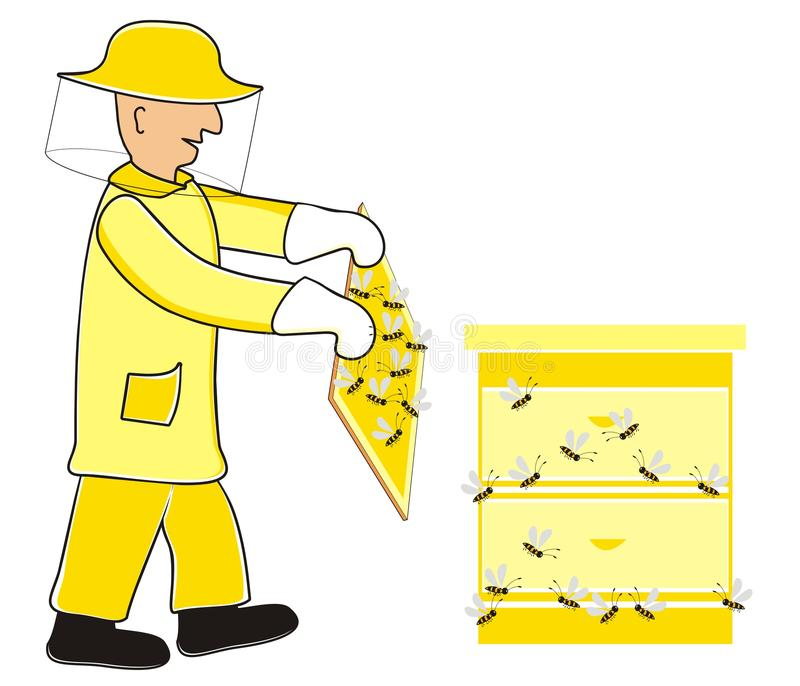 Download Beekeeper stock illustration. Illustration of bees, funny - 32352363