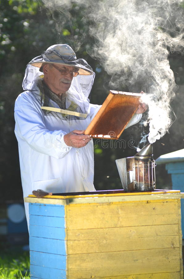 Free Beekeeper Making Inspection In Apiary Royalty Free Stock Images - 33476209