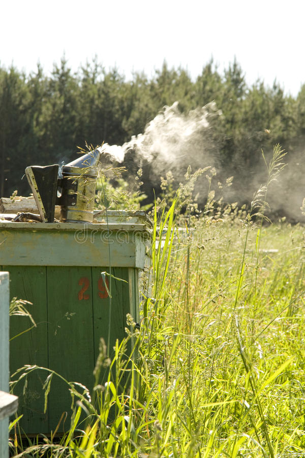 Beekeeper's smoker with smoke. Piece of wood royalty free stock images