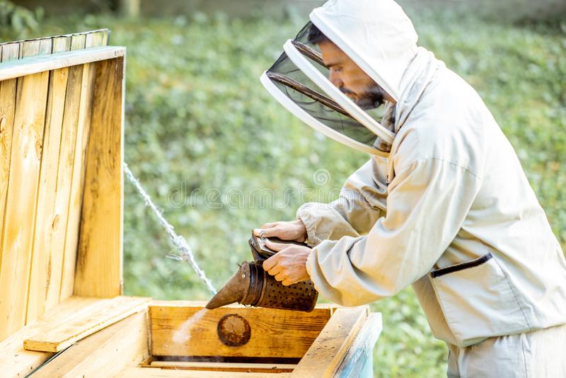 Smoking honey bees on the apiary stock images