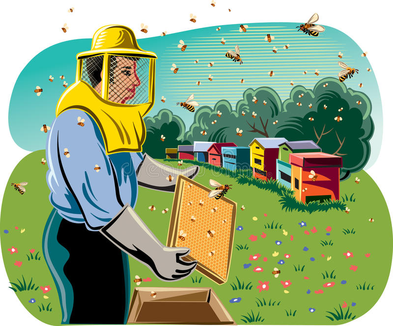 Beekeeper takes care of his hive. royalty free illustration