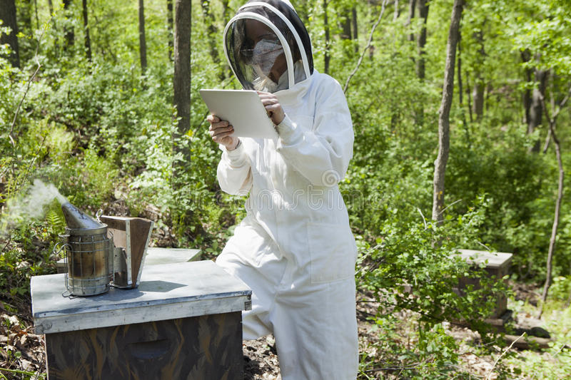 Beekeeper using digital tablet royalty free stock photography