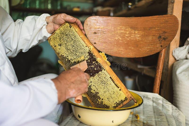 Beekeeperen förbereder honungskakan till utdragning av honung _ arkivfoton