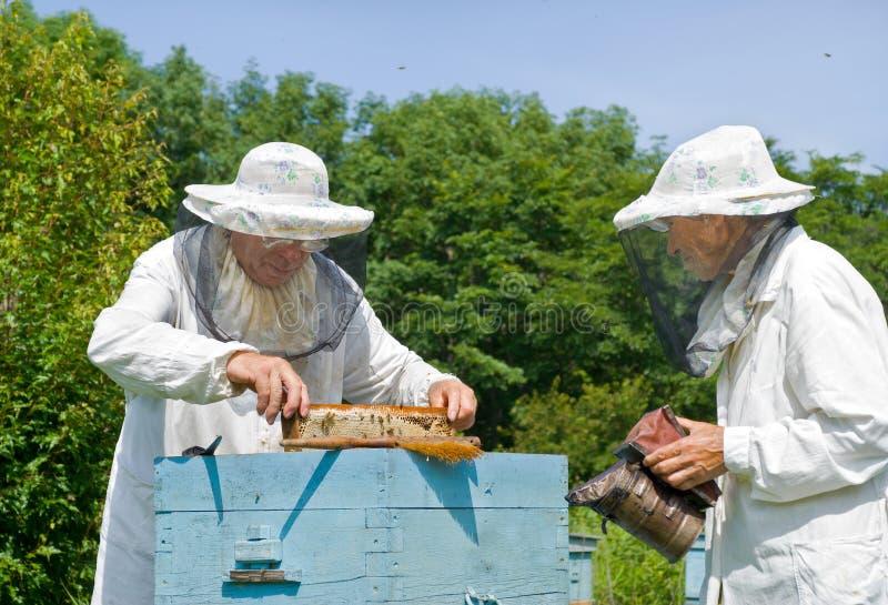 Beekeepers на крапивнице 1 стоковое изображение