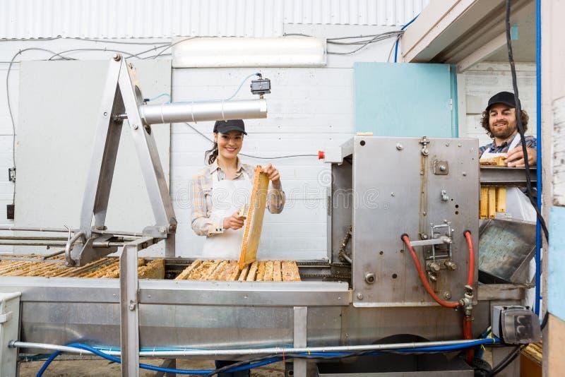 Beekeepers работая на заводе извлечения меда стоковые фото