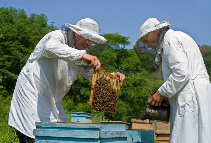 Beekeepers 17 stock foto's